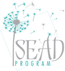 The SEAD Program LLC